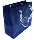 Reitmans Plastic Shopping Bag