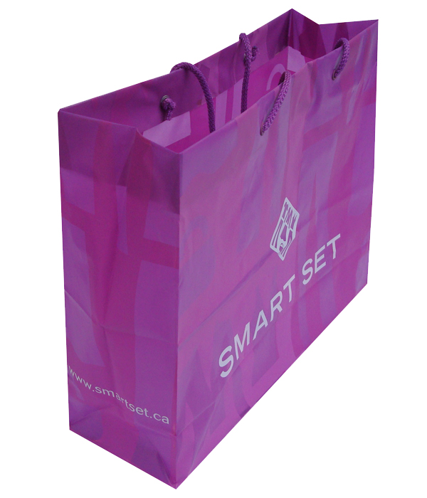 Smart Set Plastic Shopping Bag